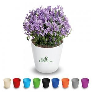 3506 Plastik Kalem